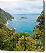 Tasman Sea At West Coast Of South Island Of New Zealand Canvas Print