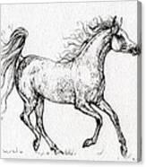 The Arabian Mare Running  Canvas Print