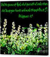 The Bible Philippians 4 Canvas Print
