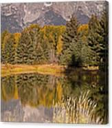 The Grand Tetons Schwabacher Landing Grand Teton National Park Canvas Print