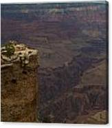 The Grandest Of Canyons Canvas Print