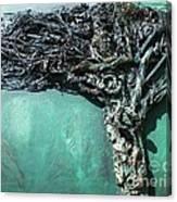 The Greenman Canvas Print