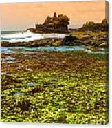 The Tanah Lot Temple - Bali - Indonesia Canvas Print
