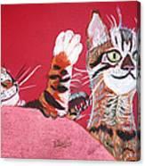 2 Tora's Canvas Print