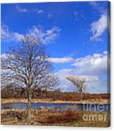 2 Tree Canvas Print