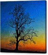 Tree Skeleton Canvas Print