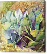 Two Fat Agaves - 140 Lb Canvas Print