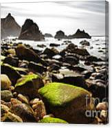 Ursa Beach Canvas Print