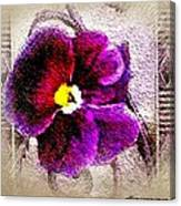 Vibrant Violet  Canvas Print