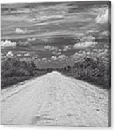 Wagon Wheel Road Bw Canvas Print