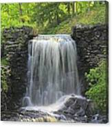Water Fall Moore State Park Canvas Print