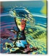 Water Splash Having A Bad Hair Day Canvas Print