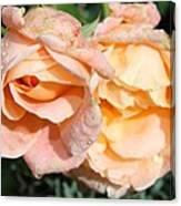 Wet Beauty Canvas Print