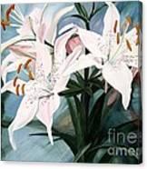 White Lilies Canvas Print