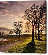 Winter Morning Shadows / Maynooth Canvas Print