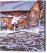 winter Russia Canvas Print