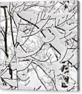 Winter Snow Scene In New England Canvas Print