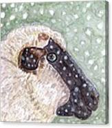 Wishing Ewe A White Christmas Canvas Print