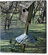 Wood Duck House IIi Canvas Print
