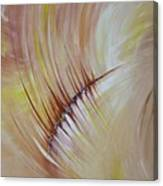 Wounded Heart Canvas Print