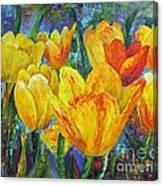 Yellow Tulips Canvas Print