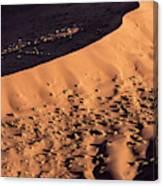 Africa, Namibia, Namib-naukluft Park Canvas Print