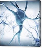 Neurons Canvas Print