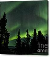 The Aurora Borealis Canvas Print