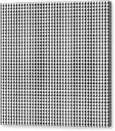 2000 4s Of Pi Canvas Print