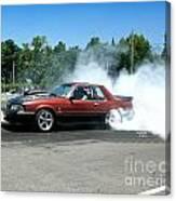 2003 07-06-14 Esta Safety Park Canvas Print