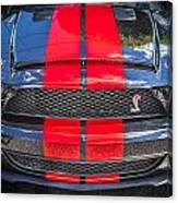 2007 Ford Shelby Gt 500 Mustang Canvas Print