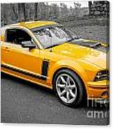 2008 Ford Mustang Rausch Supercharged Canvas Print