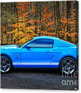 2010 Shelby Gt500 Canvas Print