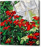 2013 010 Poinsettias And Dots Conservatory At The Us Botanic Garden Washington Dc Canvas Print