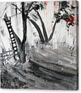 2013 058 Tree And Ladder Alexandria Virginia Silver Black White Red Canvas Print