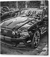 2013 Ford Shelby Mustang Gt 5.0 Convertible Bw  Canvas Print