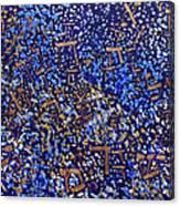 2014 32 Starry Shema Canvas Print