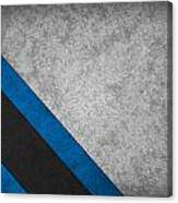 Carolina Panthers Canvas Print