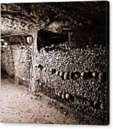 Skulls And Bones In The Catacombs Of Paris France Canvas Print