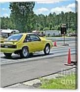 2121 07-06-14 Esta Safety Park Canvas Print
