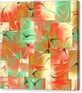 214a Canvas Print