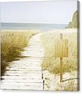 Beach View Canvas Print