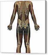The Skeleton Canvas Print