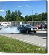 2228 07-06-14 Esta Safety Park Canvas Print