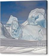 Pack Ice, Antarctica Canvas Print