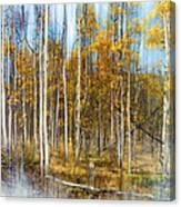 2501 Canvas Print