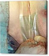 Breast Cancer Surgery Canvas Print