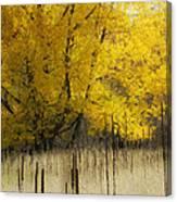 2804 Canvas Print