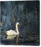 2805 Canvas Print
