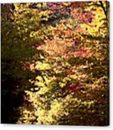 Autumn Colors And Road  Canvas Print